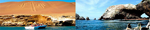 Full Day Paracas (en Cruz del Sur)