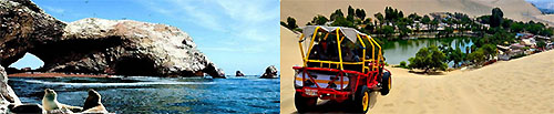 Full Day Paracas e Ica (en Cruz del Sur)