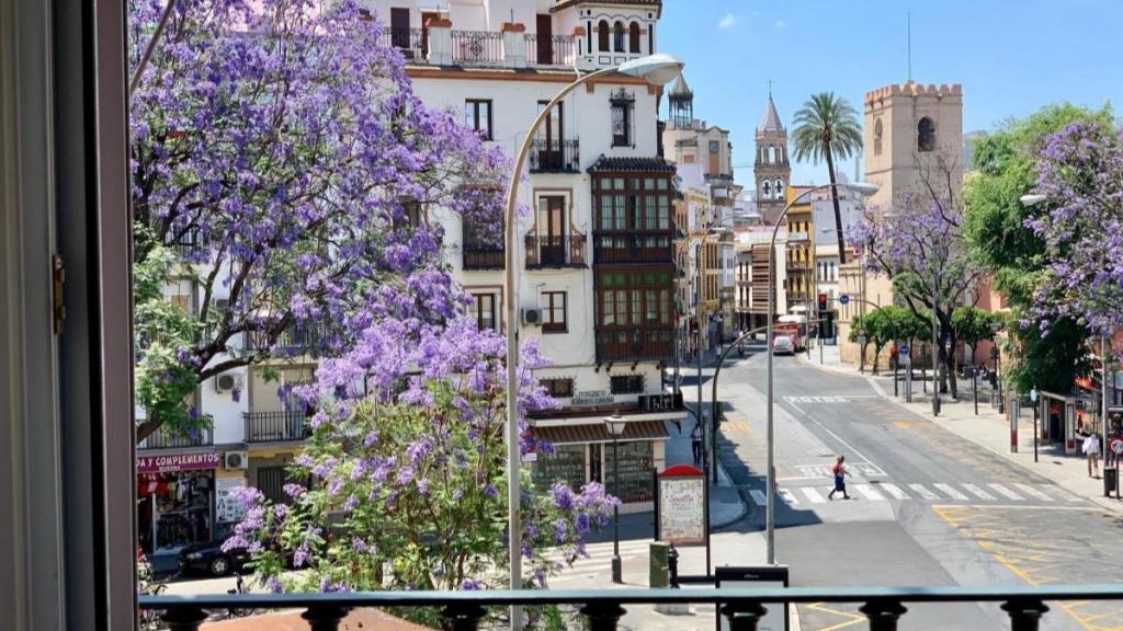 2 - Hotel Doña Blanca