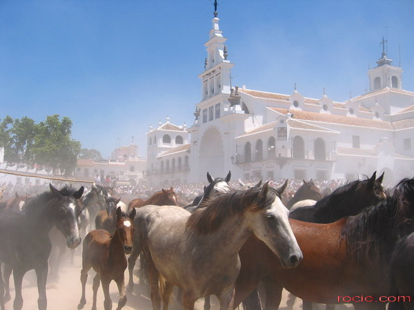 Hospederia El Cazadero Real Huelva