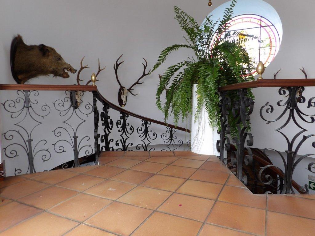 6 - Hotel Palacio Donana