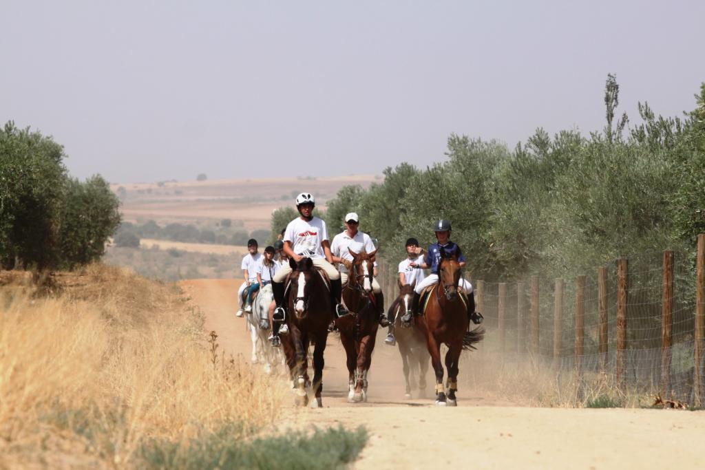 7583-1584092275_caballos.jpg.jpg